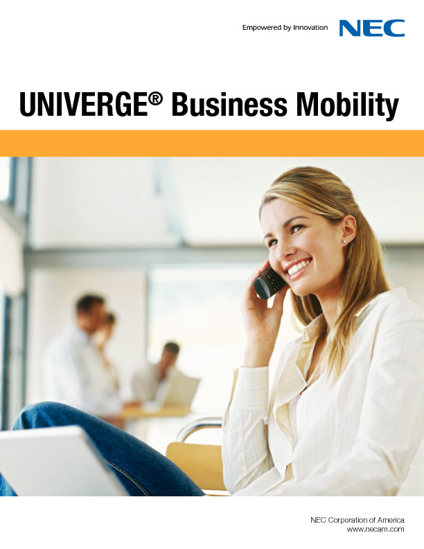 188583_BusinessMobilityIPDECT_Brochure.pdf