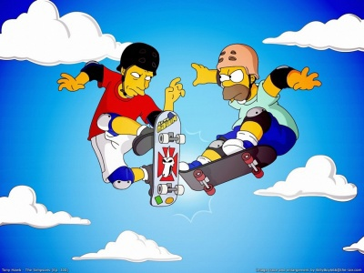 400_1185157632_tony-hawk-con-homero.jpg