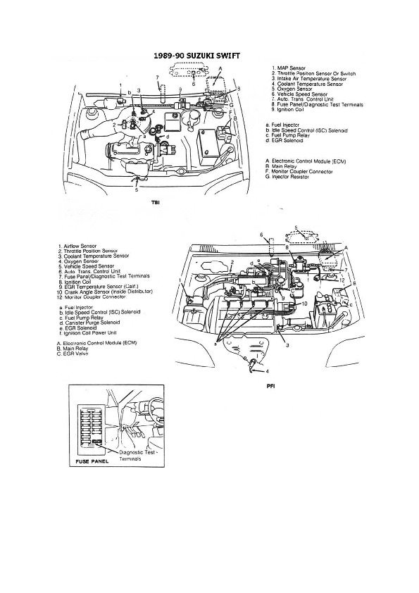 esqzuki010.pdf